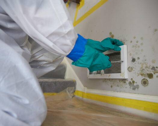 How to Test for Mold-Lake Worth Mold Remediation & Water Damage Restoration Services-We offer home restoration services, water damage restoration, mold removal & remediation, water removal, fire and smoke damage services, fire damage restoration, mold remediation inspection, and more.